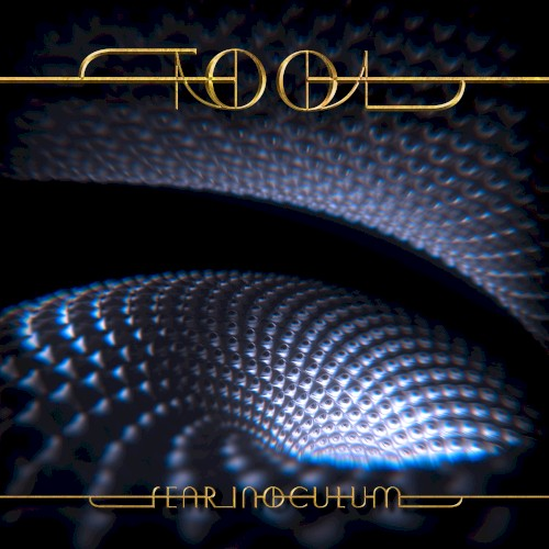 Album cover for Fear Inoculum by TOOL.